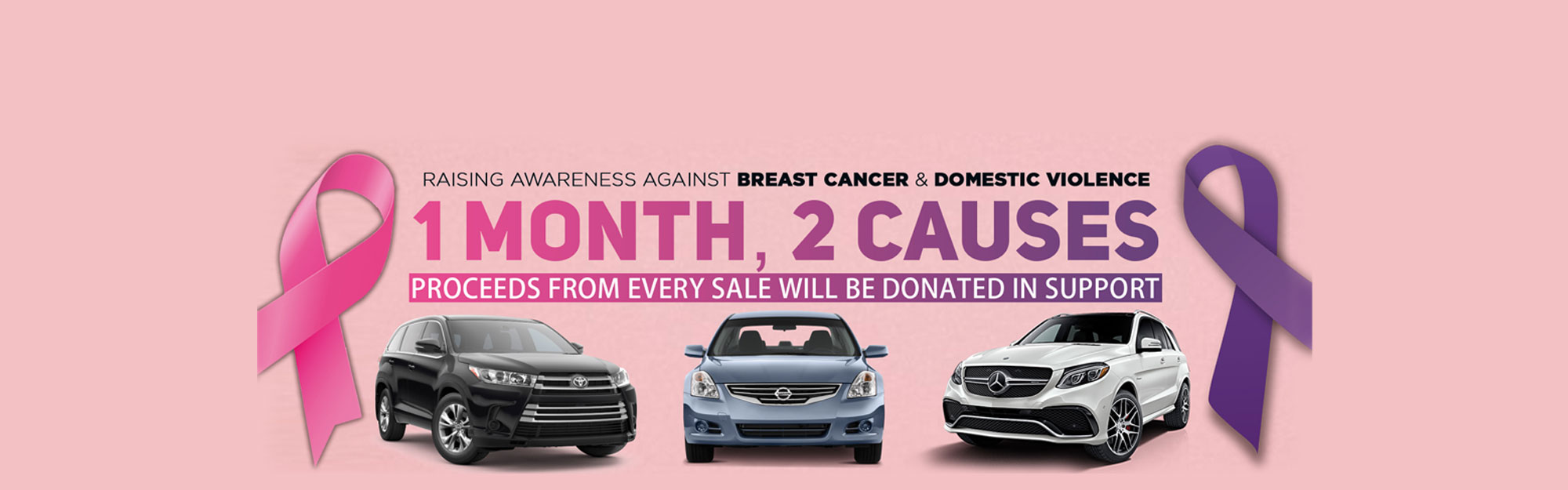 Breast Cancer & Domestic Violence Awareness